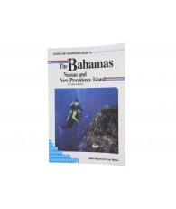 Diving - Snorkeling Guide to the Bahamas
