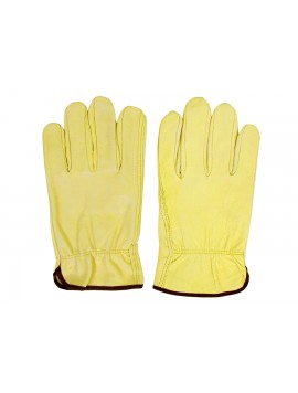 Kellyco Genuine Leather Gloves LGLV Image 1