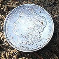 big-silver-seated-in-the-south-1
