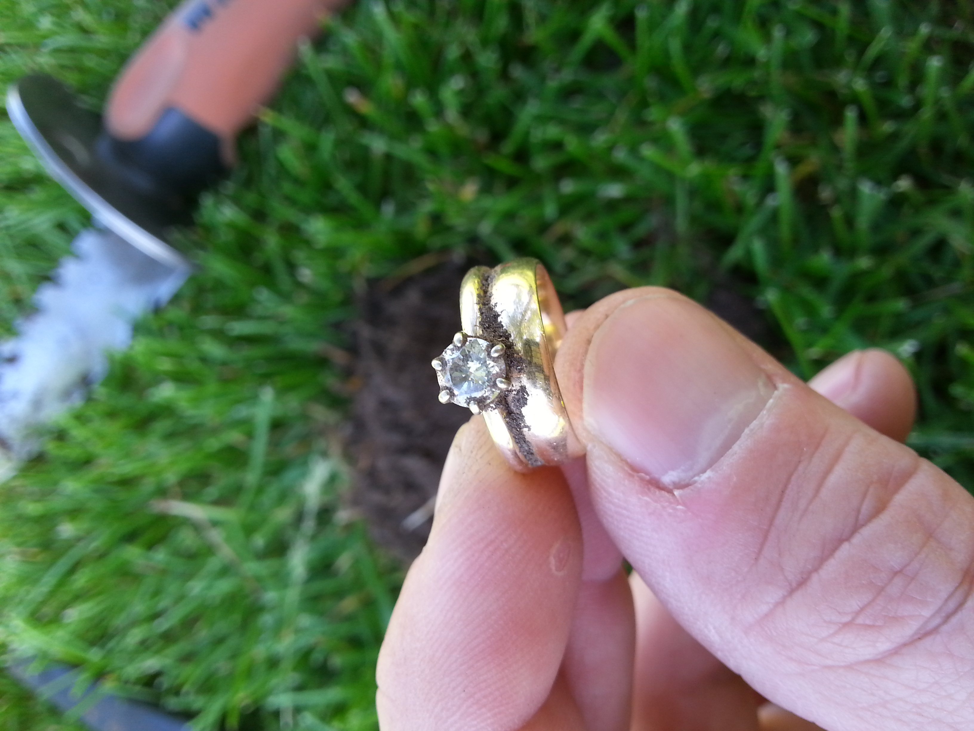 Metal Detector To Find Ring