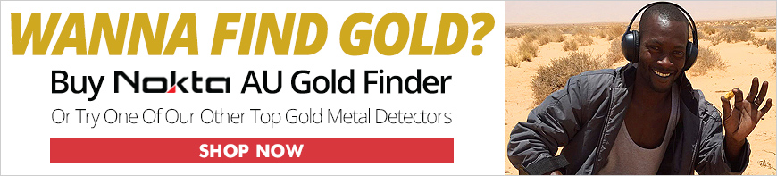 Top Gold Metal Detectors