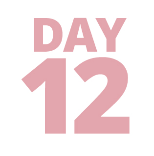 Day 12 Deal
