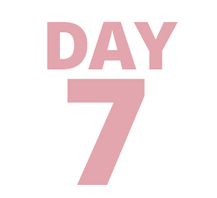 Day 7 Deal