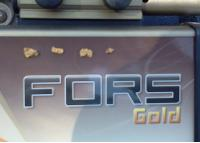 Nokta FORS GOLD Standard Package